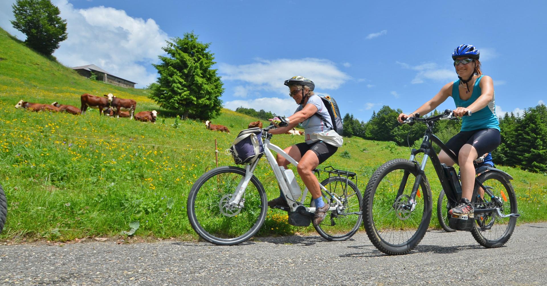vélos - image